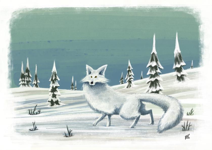 Animalicos Zorro Polar